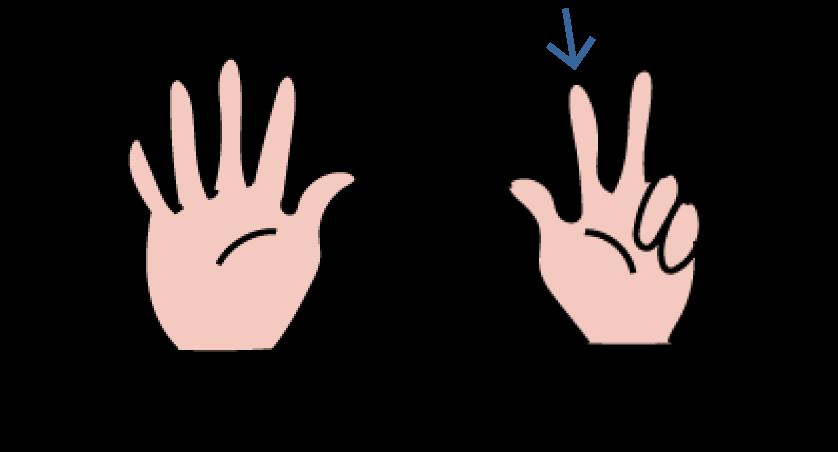 leren tellen met vingerbeelden, verkort tellen